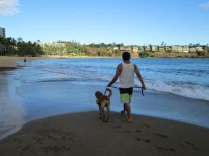 Nov 1 2012 Taking Pup Kauai on 1st field trip from Kauai Humane Society at Kalapaki Beach (23)