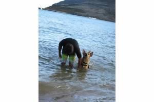 Nov 1 2012 Taking Pup Kauai on 1st field trip from Kauai Humane Society at Kalapaki Beach (6)