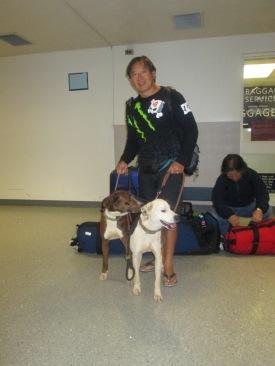 2013 Oct 20 Shasta... Zorro & Gus flying to Oakland airport  (88)