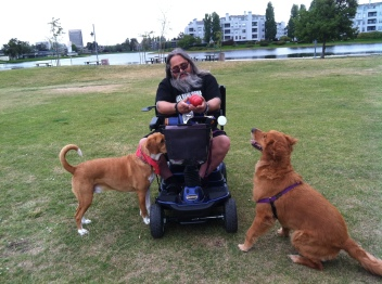 2015 May 20 Shasta wfriends Rob and Ollie Ollie from Paws for Purple Hearts (43)