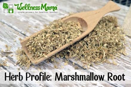 marsmellow root