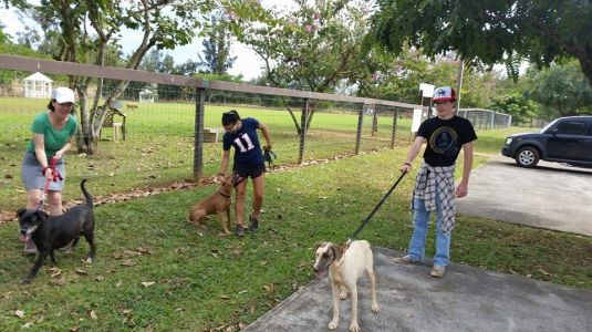 KHS RClub Kim Foster, Tracy Capman, and Stephen stop for a quick photo with some happy pups 2 1 15